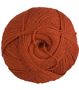 Pure Alpaca Wool - Rusty orange - 100 gr.